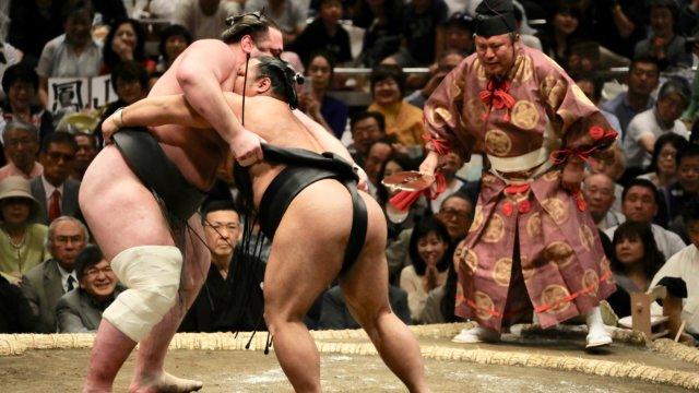 相撲 盤石な体勢